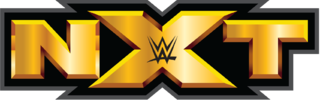 WWE NXT 28th August (2014) HD 720P 200MB Free Download