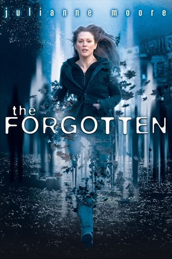 The Forgotten 2004 Dual Audio WEBRip 700MB