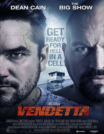 Vendetta 2015 Hindi Dual Audio 400MB BluRay 720p ESubs HEVC